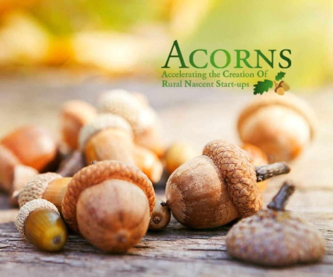 Acorns Women Rural Ireland